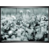 Glas Schilderij Bloemen | Grijs, Zwart, Groen