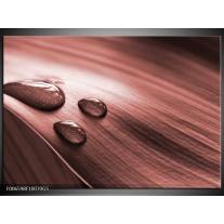 Glas Schilderij Macro, Druppel | Bruin, Rood