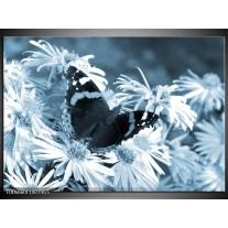Glas Schilderij Bloemen, Vlinder | Blauw, Grijs, Zwart