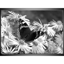 Glas Schilderij Bloemen, Vlinder | Zwart, Wit, Grijs