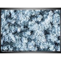 Glas Schilderij Bloemen | Blauw, Grijs