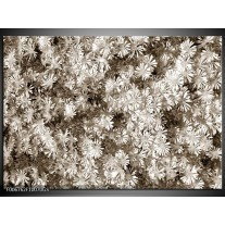 Glas Schilderij Bloemen   Sepia
