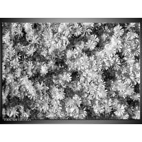Glas Schilderij Bloemen | Zwart, Wit, Grijs