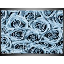 Glas Schilderij Bloemen, Roos | Blauw, Grijs