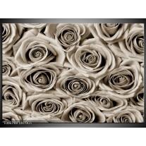 Glas Schilderij Bloemen, Roos | sepia