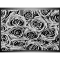 Glas Schilderij Bloemen, Roos | Zwart, Grijs