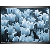 Glas Schilderij Tulpen, Bloemen   Blauw, Grijs