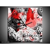 Wandklok Schilderij Wilde Dieren | Rood, Grijs, Wit