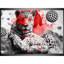 Glas Schilderij Wilde Dieren | Rood, Grijs, Wit