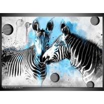 Glas Schilderij Zebra, Dieren | Blauw, Zwart, Wit