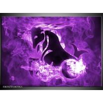Glas Schilderij Paard, Abstract | Paars, Zwart, Wit
