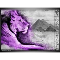 Canvas Schilderij Leeuw, Dieren | Paars, Grijs