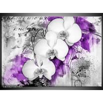 Glas Schilderij Bloem, Orchidee | Grijs, Paars, Wit