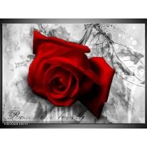 Canvas Schilderij Roos, Bloem | Rood, Zwart, Wit