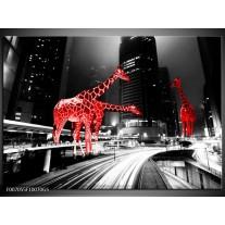 Glas Schilderij Steden, Giraffe | Zwart, Wit, Rood