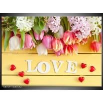 Glas Schilderij Tulpen, Bloemen | Geel, Roze, Wit