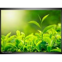 Canvas Schilderij Natuur | Groen, Geel