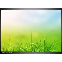 Canvas Schilderij Natuur, Gras | Groen, Geel