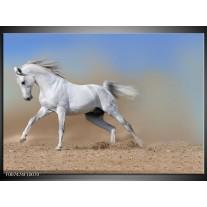 Canvas Schilderij Paard, Dieren | Crème, Blauw, Wit