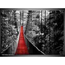 Glas Schilderij Natuur, Brug | Zwart, Wit, Rood