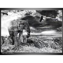 Glas Schilderij Modern, Olifant | Zwart, Wit, Grijs
