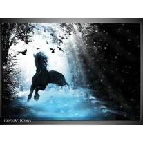 Glas Schilderij Paard, Modern | Blauw, Zwart, Wit