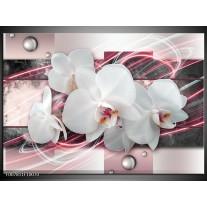 Canvas Schilderij Orchidee, Bloemen | Roze, Grijs, Wit