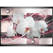 Glas Schilderij Orchidee, Bloemen | Roze, Grijs, Wit
