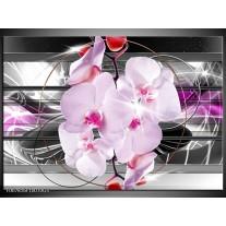 Glas Schilderij Orchidee, Bloemen | Grijs, Paars