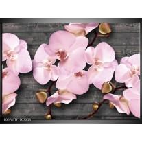 Glas Schilderij Orchidee, Bloemen | Grijs, Roze