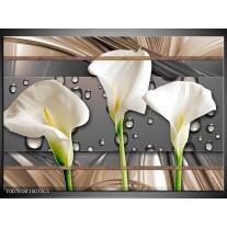 Glas Schilderij Bloemen, Modern | Grijs, Bruin