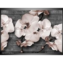 Glas Schilderij Orchidee, Bloemen | Grijs