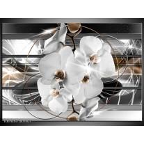 Glas Schilderij Orchidee, Bloemen | Zilver, Wit