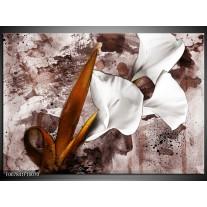 Canvas Schilderij Bloemen, Modern | Bruin, Wit