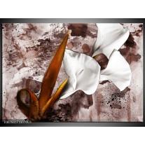 Glas Schilderij Bloemen, Modern | Bruin, Wit