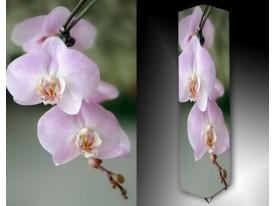 Ledlamp 1234, Orchidee, Roze, Groen, Wit
