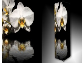 Ledlamp 1284, Orchidee, Zwart, Wit, Oranje