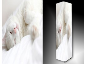 Ledlamp 1601, Kat, Wit, Roze, Geel