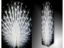 Ledlamp 1610, Pauw, Wit, Zwart
