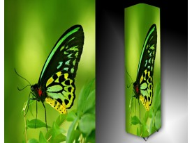 Ledlamp 1632, Vlinder, Groen, Zwart, Geel