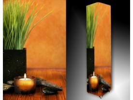 Ledlamp 315, Plant, Groen, Oranje, Grijs