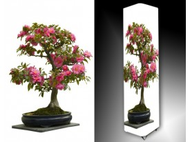 Ledlamp 768, Bonsai, Groen, Roze, Wit