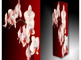 Ledlamp 914, Orchidee, Wit, Rood, Groen