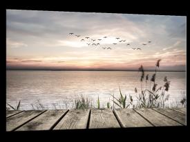 Glasschilderij Brug, Natuur | Bruin, Grijs | 120x80cm 1Luik