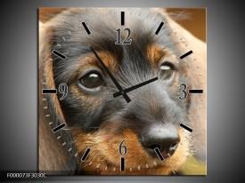 Wandklok op Canvas Hond | Kleur: Grijs, Zwart, Bruin | F000073C