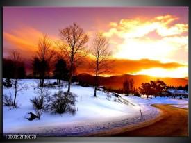Glas schilderij Winter | Wit, Oranje, Bruin