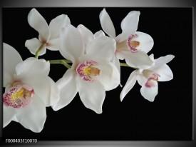Glas schilderij Orchidee | Wit, Zwart, Geel