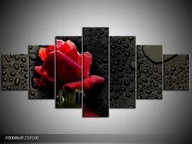 Canvas schilderij Roos | Rood, Zwart, Wit | 210x100cm 7Luik