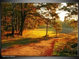 Foto canvas schilderij Natuur | Groen, Geel, Bruin