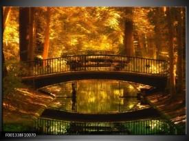 Foto canvas schilderij Natuur   Bruin, Geel, Goud